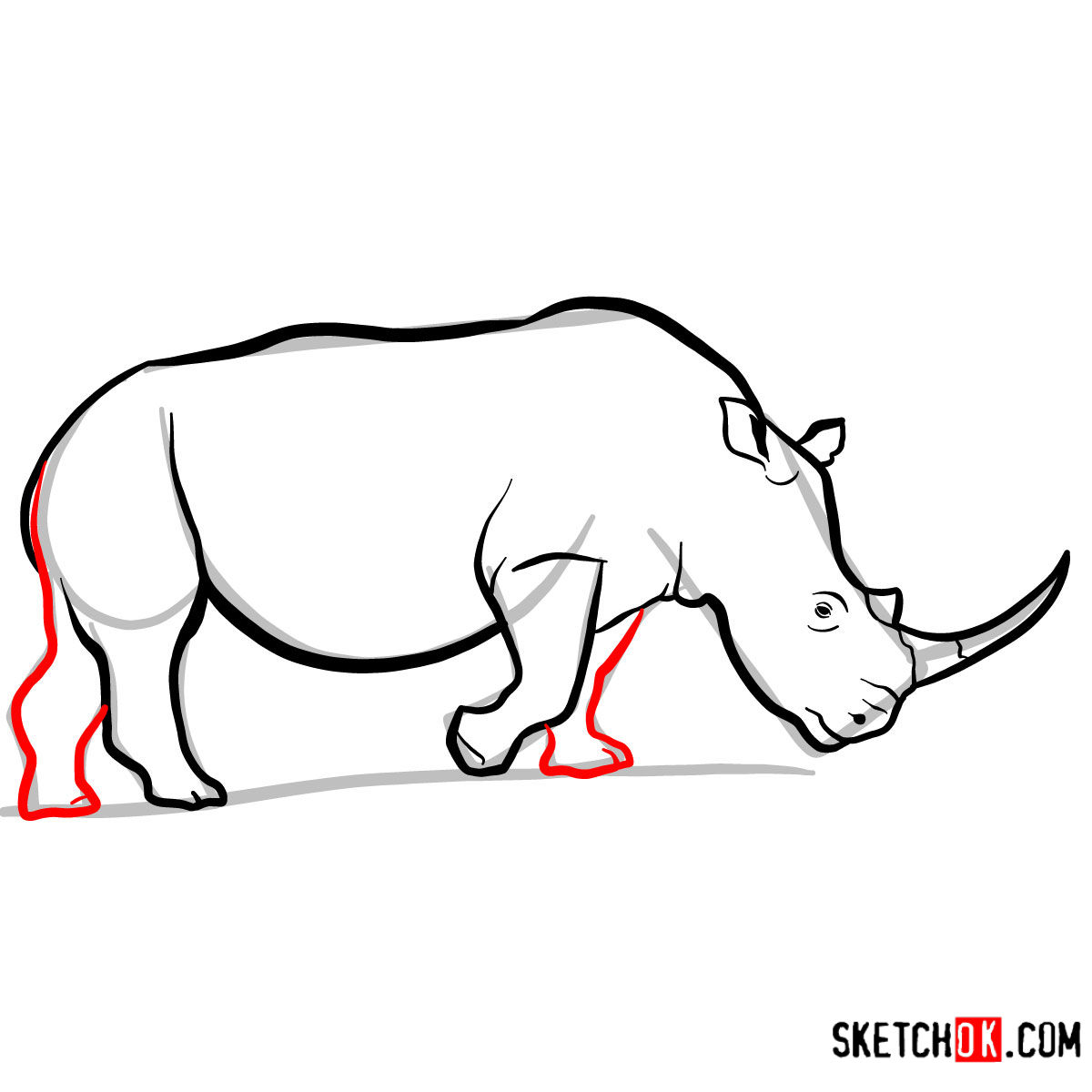 How to draw a Rhinoceros | Wild Animals - step 09