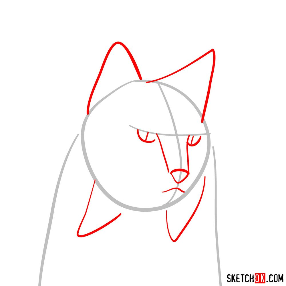 How to draw a lynx head - step 02