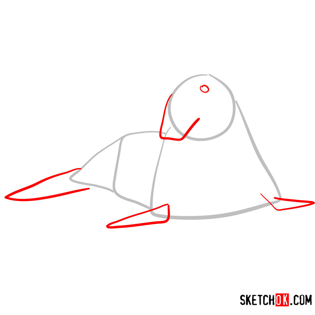How to draw an Elephant seal | Sea Animals - step 02