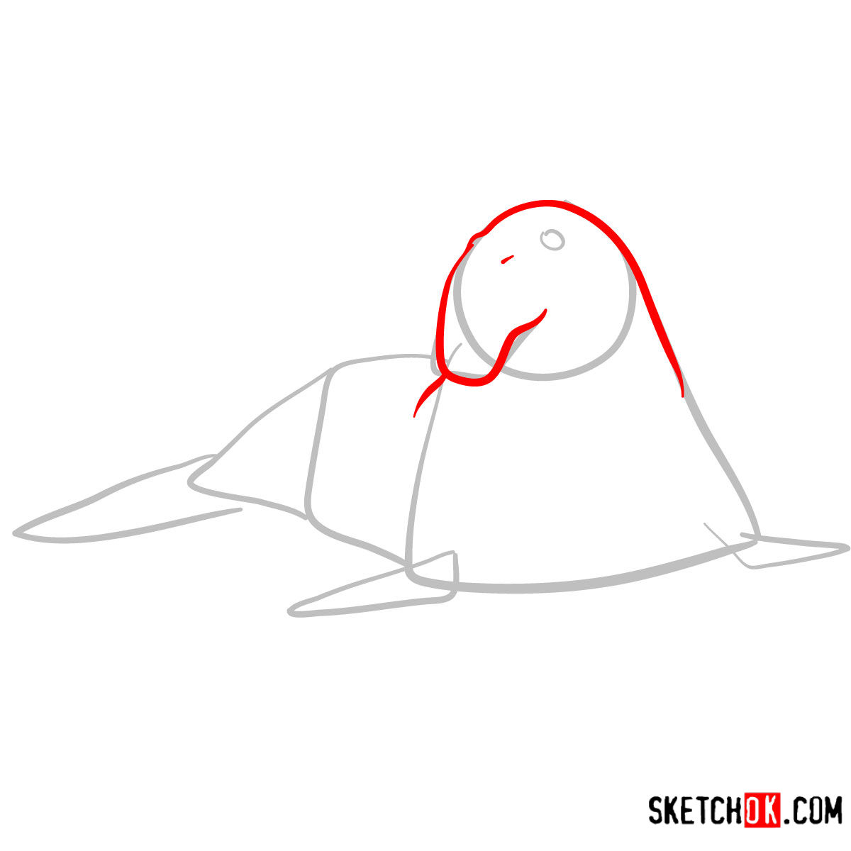 How to draw an Elephant seal | Sea Animals - step 03