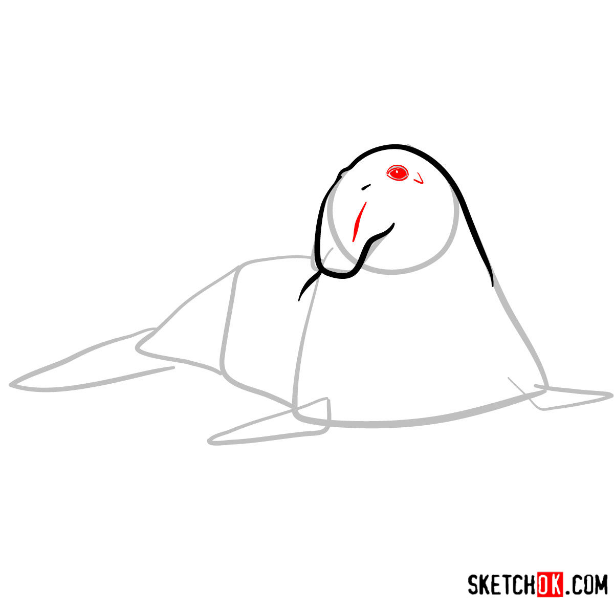 How to draw an Elephant seal | Sea Animals - step 04