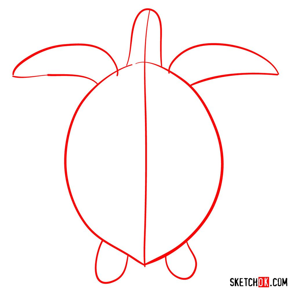 How to draw a Sea Turtle - step 01