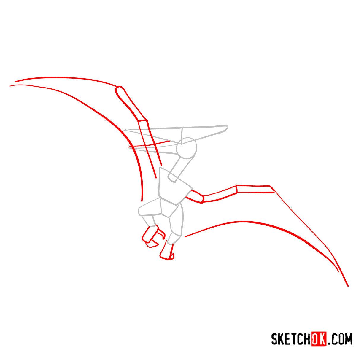 How to draw a Pterodactylus   Extinct Animals - step 02