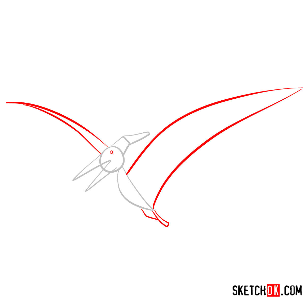 How to draw a Pteranodon | Extinct Animals - step 02