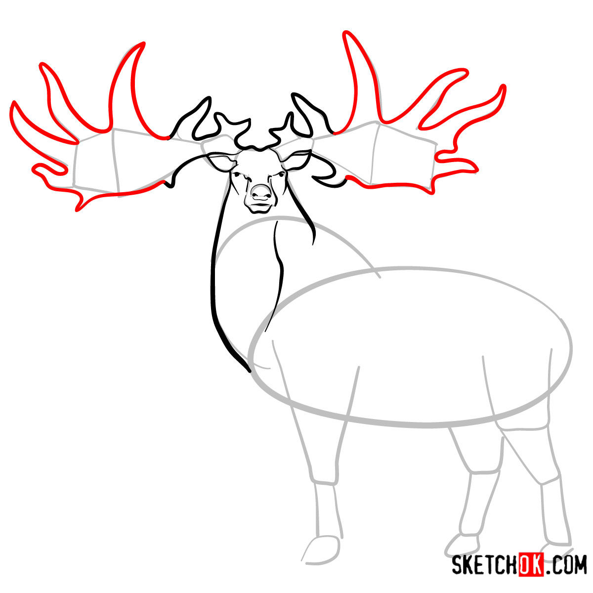 How to draw an Irish elk | Extinct Animals - step 07
