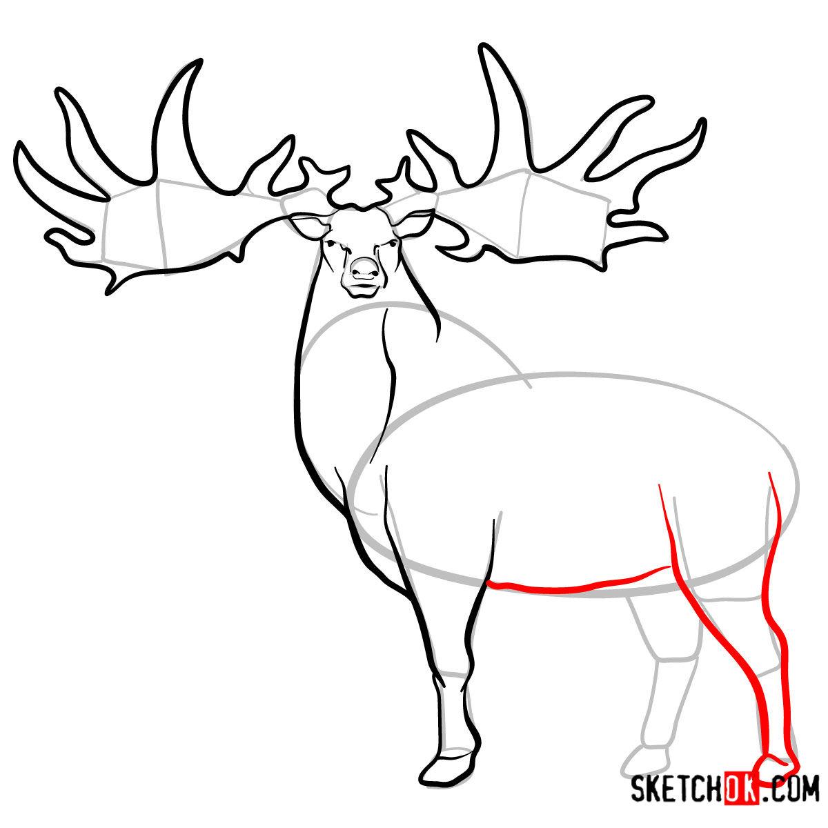 How to draw an Irish elk | Extinct Animals - step 09