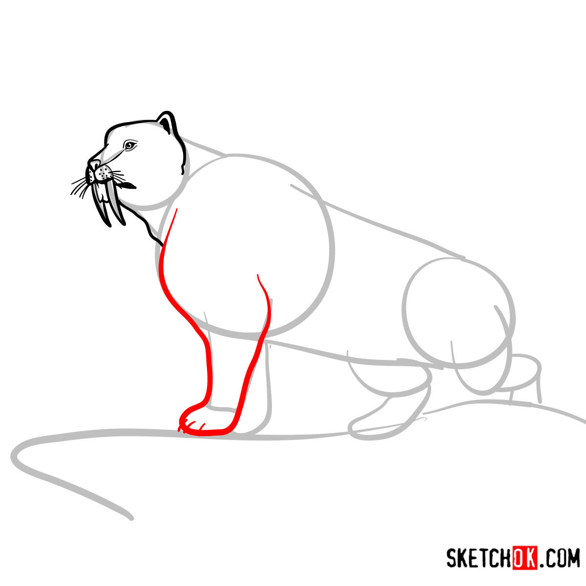 How to draw a Sabre Tooth beast | Extinct Animals - step 06