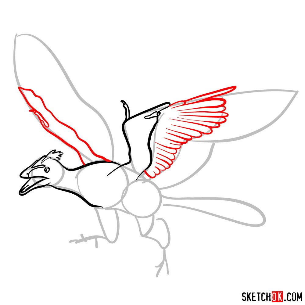 How to draw an archaeopteryx - step 06