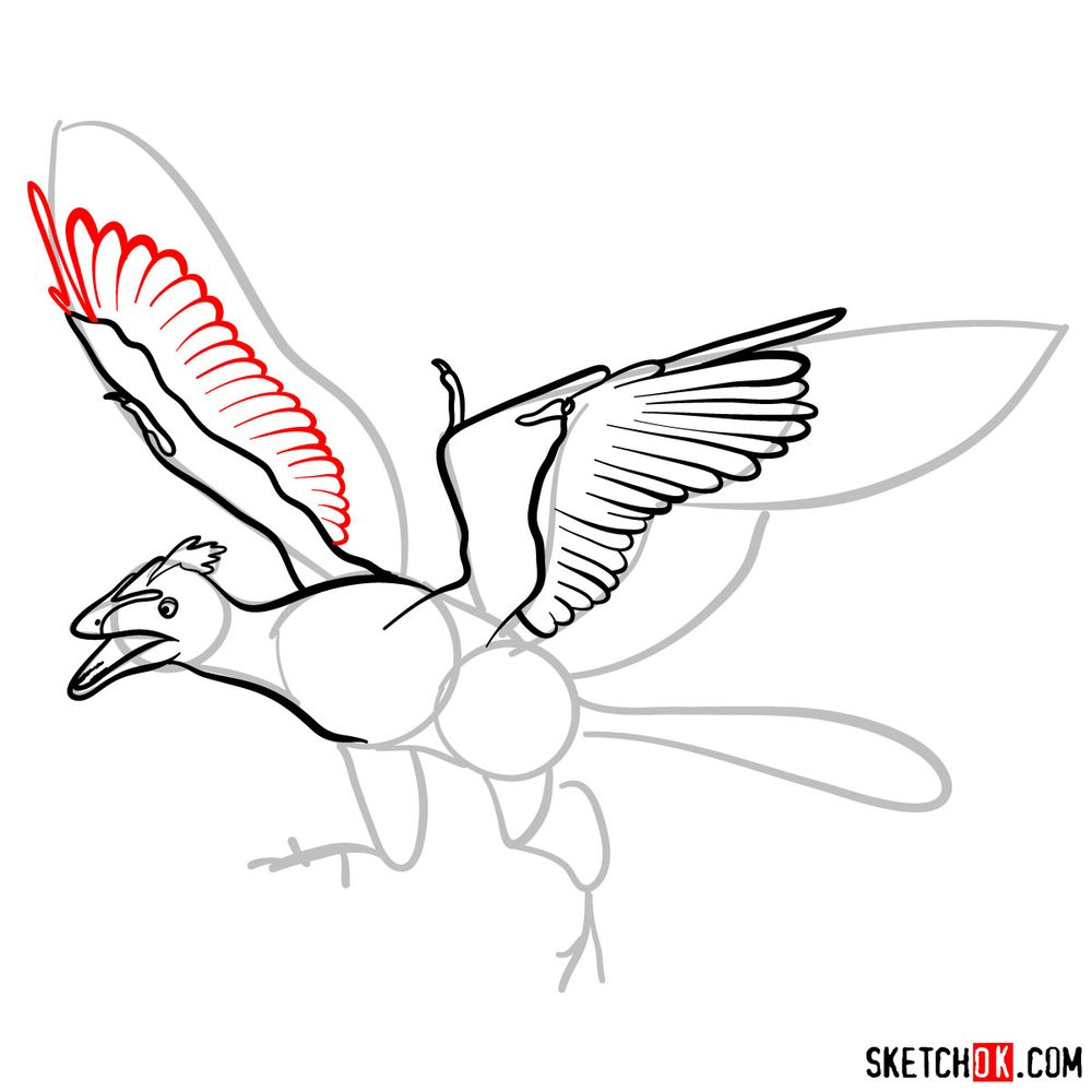 How to draw an archaeopteryx - step 07