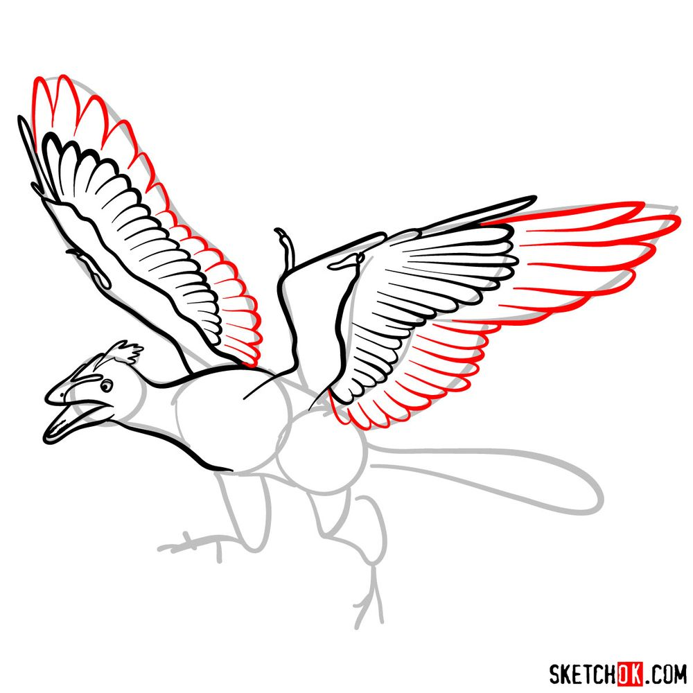 How to draw an archaeopteryx - step 08
