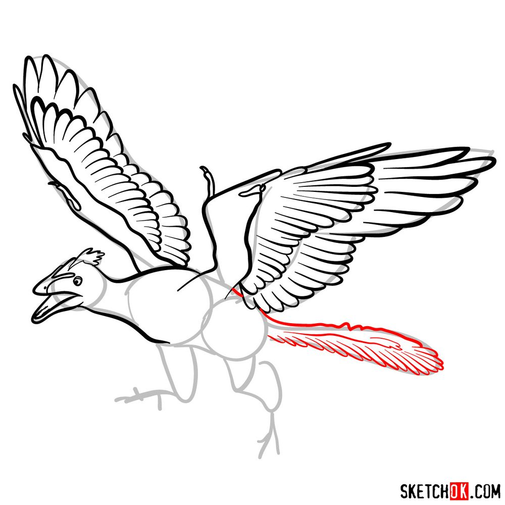 How to draw an archaeopteryx - step 09