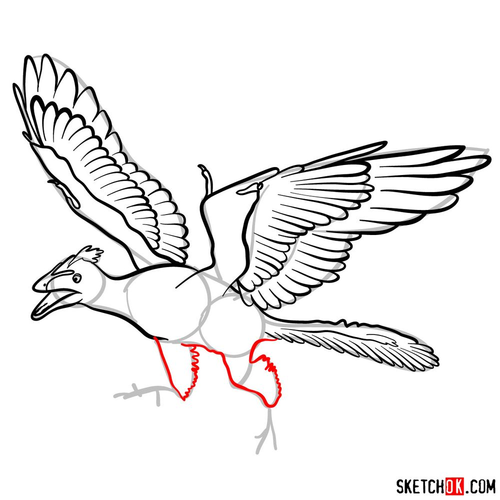 How to draw an archaeopteryx - step 10