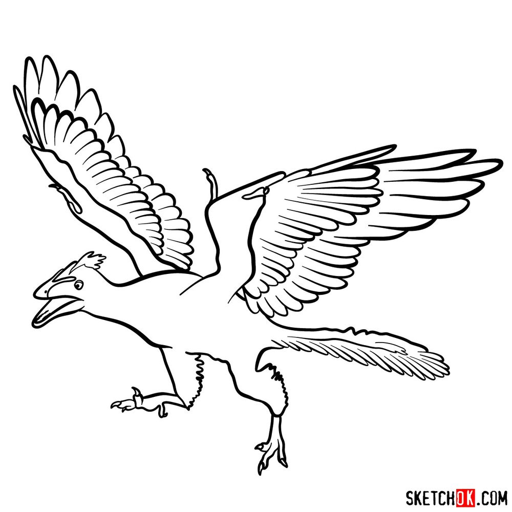 How to draw an archaeopteryx
