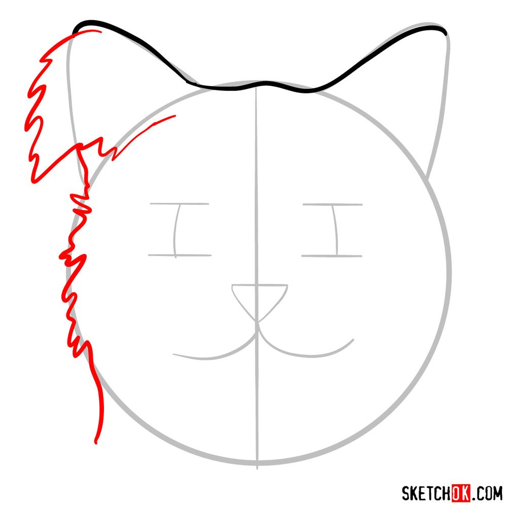 How to draw a silly cat mask - step 04